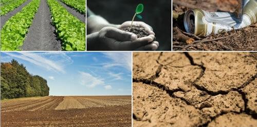 Cuidados del suelo consejos para proteger la tierra for 5 cuidados del suelo
