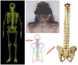cuidados de la columna vertebral