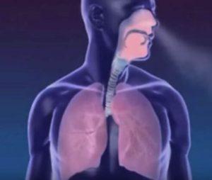 enfermedades y cuidados del sistema respiratorio