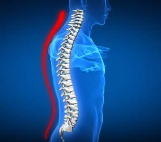 salud y cuidado de la columna vertebral